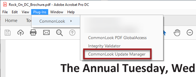 Adobe Update Manager